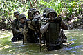 Defense.gov News Photo 110429-M-VG363-0973 - U.S. Marines carry an exercise participant simulating injury through the water as they participate in the endurance course at the Jungle Warfare.jpg