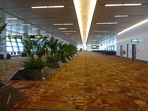Indira Gandhi International Airport - Terminal 3 gates departure terminal