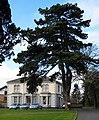 Derryvolgie House, 73 Malone Road, Belfast - geograph.org.uk - 713468.jpg