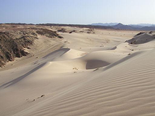 DesertSinai