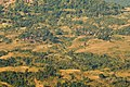Dhodani,Matheran - panoramio.jpg