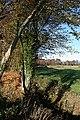 Dipple Brae - geograph.org.uk - 1568702.jpg