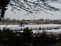 Diss Mere - When Winter Calls. - geograph.org.uk - 1659843.jpg