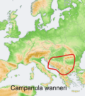 Distribution map Campanula wanneri.png