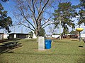 Doerun Bicentennial Park.JPG