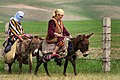 Donkey riding in Tajikistan (4).jpg