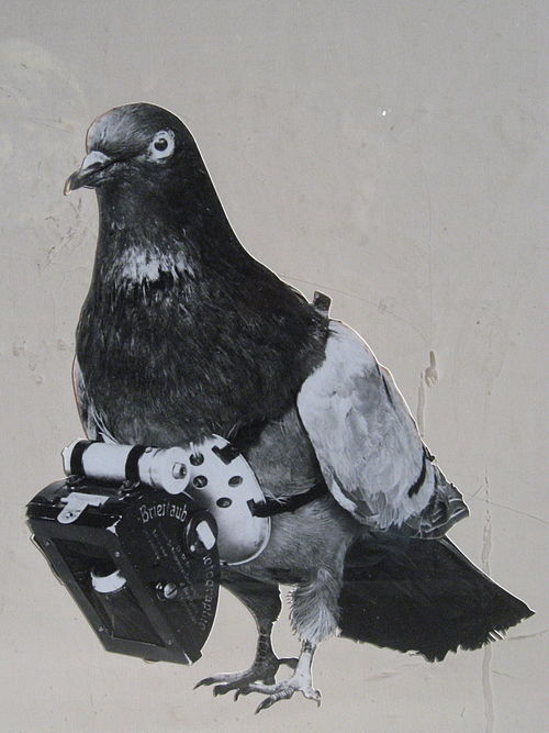 Dr Julius Neubronner patented a miniature pigeon camera activated by a timing mechanism, 1903