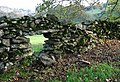 Dry stone wall - geograph.org.uk - 272452.jpg
