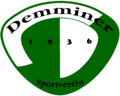 Dsv91 logo.png