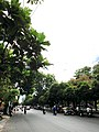 Duong le lai q1 tphcm - panoramio (1).jpg