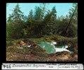 ETH-BIB-Gwandelenfluh-Bergsturz, geworfener Wald-Dia 247-00924.tif
