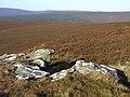 East Kielder Moor - geograph.org.uk - 1546637.jpg