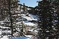 Elbow falls Alberta various angles (8587297628).jpg