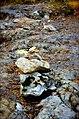 Ellensburg, WA, USA - panoramio (4).jpg