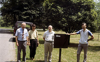 George Ware - Elms field at the Morton Arboretum. From left of picture: George Ware, Mrs Vera Grbic, Eugene Smalley and Ray Guries (July 2, 1987)