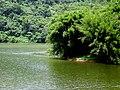 Embalse Dos Bocas, Utuado, Puerto Rico - panoramio (1).jpg