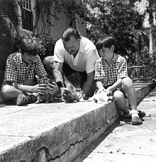 a dark-haired man wearing a light shirt with two dark-haired boys wearing shorts, sitting on a stone patio playing with three kittens