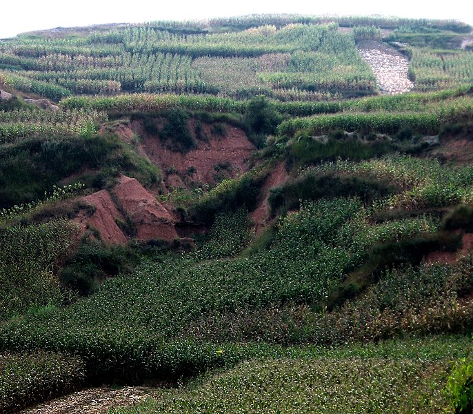 Červená pôda vzniknutá chemickým zvetrávaním