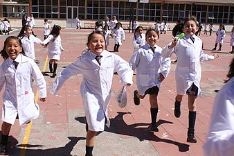 essays on school uniforms and dress codes