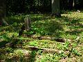 Evang. Cemetery in Niwka (Puszczykowo) (7).jpg