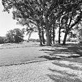Exterieur overzicht tuin (J.D. Zocher) - Diepenveen - 20318649 - RCE.jpg