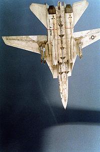 F-14A VF-41 Operation Desert Storm CAP.JPEG