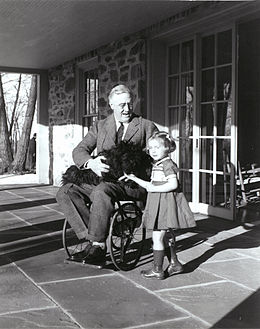 Rare photograph of Roosevelt in a wheelchair with Ruthie Bie and Fala (1941)  sc 1 st  Wikipedia & Paralytic illness of Franklin D. Roosevelt - Wikipedia