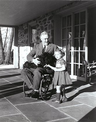 Paralytic illness of Franklin D. Roosevelt - Rare photograph of Roosevelt in a wheelchair, with Ruthie Bie and Fala (1941)