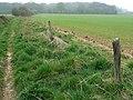 Farmland north of footpath to Castle Copse, Great Bedwyn - geograph.org.uk - 399891.jpg