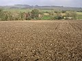 Farmland south of Dole's Ash Farm - geograph.org.uk - 95256.jpg