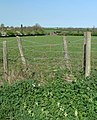 Farmland south of Smeeton Westerby, Leicestershire - geograph.org.uk - 417865.jpg