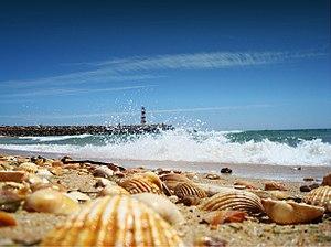 Faru: Faro Algarve Portugal ilha barreta