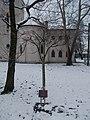 Ferenc Zajti memorial tree, Pestújhelyi Square, 2018 Pestújhely.jpg