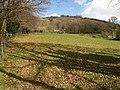 Field below Moor Wood - geograph.org.uk - 1228445.jpg