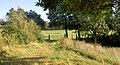 Field gate. - geograph.org.uk - 548840.jpg