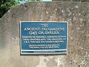 Tarring, West Sussex - Fig Garden, Tarring