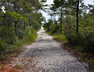 National Register of Historic Places listings in Santa Rosa County, Florida - Image: First American Road in Florida