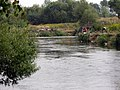 Fishermen on the river Svislač near the Minsk sewage treatment plant - 4.jpg