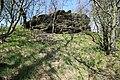 Flächennaturdenkmal bei Zwönitz 2H1A2480WI.jpg