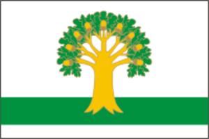 Arkhangelsky District - Image: Flag of Arkhangelskoe rayon (Bashkortostan)