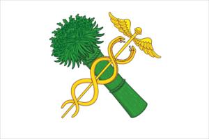 Novozybkov - Image: Flag of Novozybkov (Bryansk oblast)
