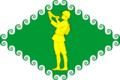 Flag of Tuksinskoe (Karelia).png