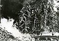 Flame-throwing-tank-bouganville-RG-208-AA-158-L-001.jpg