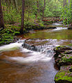 Flickr - Nicholas T - Kitchen Creek (2).jpg