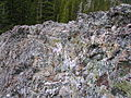 Flickr - brewbooks - Interesting rock while walking in to Royal Basin.jpg