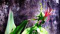 Flower - Adobe Photoshop CS4 Edit By SOURAV.jpg