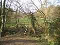 Footbridge across the stream - geograph.org.uk - 1207064.jpg