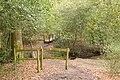 Footbridge on footpath south of Minstead House - geograph.org.uk - 781251.jpg