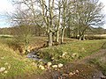 Ford and meandering stream - geograph.org.uk - 622103.jpg