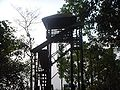 Forest Watch Tower Pilibhit Forest Renge.JPG